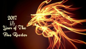 year-of-the-fire-rooster-top